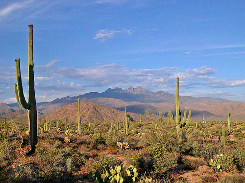 Meditation Retreat at Picture Rocks in Tucson, Arizona