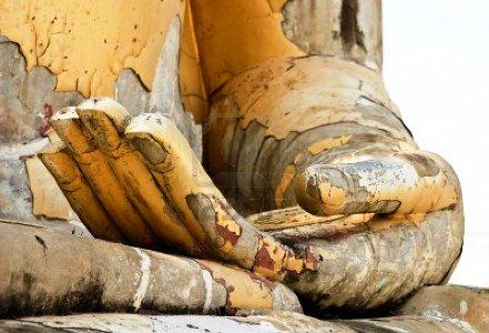 hand15506549-buddha-hand